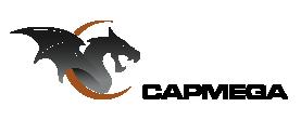 El sitio de Capmega está cargando